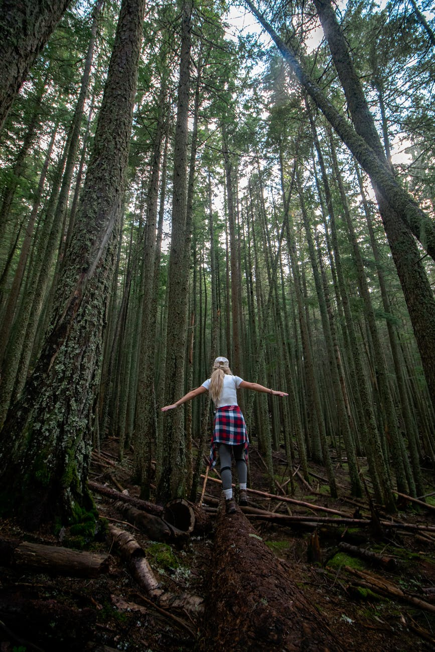 woman walking on a log in the forest